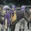 Colonie d'équitation, quelques questions