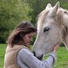 Parlons-en à nos chevaux !